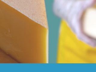 Curso de procedimientos para el control y la calidad en la elaboración de quesos